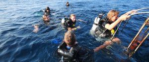 Koh Tao Diving Sites