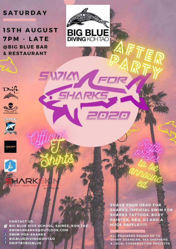 Swim for Sharks Koh Tao