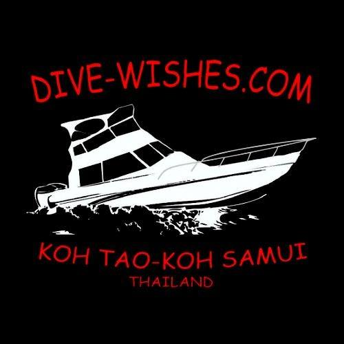 Dive Wishes Logo